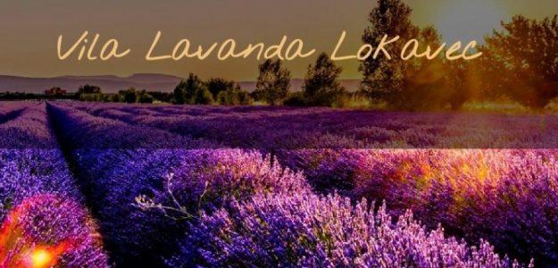 Vila Lavanda Lokavec